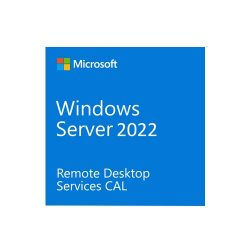 Windows Remote Desktop Services CAL 2022 English OEM OLC 100 Clt User CAL